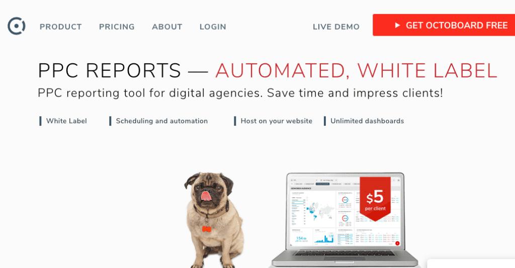 data-report-tu-dong-trong-digital-marketing