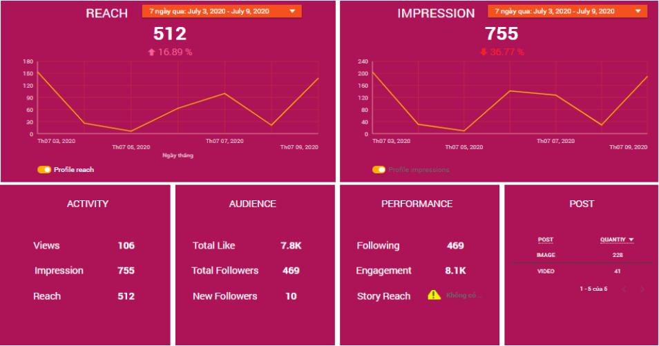 Báo cáo theo dõi tổng quan Instagram